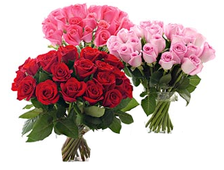 25 роз букет Стандарт