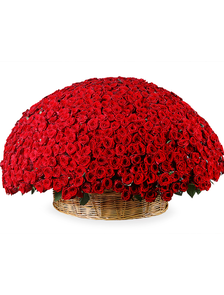 Композиция 1001 роза Классик