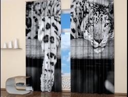 Фотошторы: Белый леопард