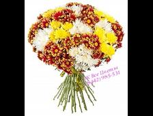 Букет кустовых хризантем Солнечные Поздравления