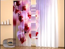 Фотошторы 3D: Ветка орхидей