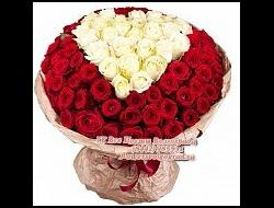 51 роза Красная роза 51 и 101 штука по акции (51 роза и 101 роза)