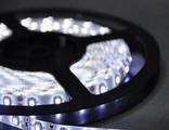 Світлодіодна LED стрічка SMD3528 60 IP33 біла Standart