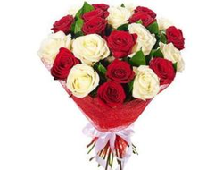 19 роз Сливочный дессерт