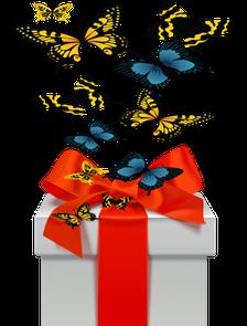 салют из бабочек ,бабочки в коробке
