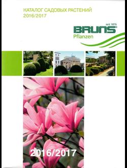 Каталог садовых растений Bruns Pflanzen