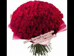 151 роза букетом Алый