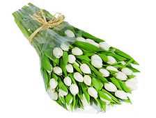 51 белый Тюльпан букет Гламур