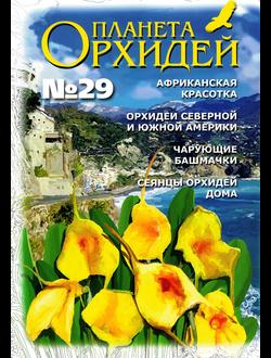 Планета орхидей № 29