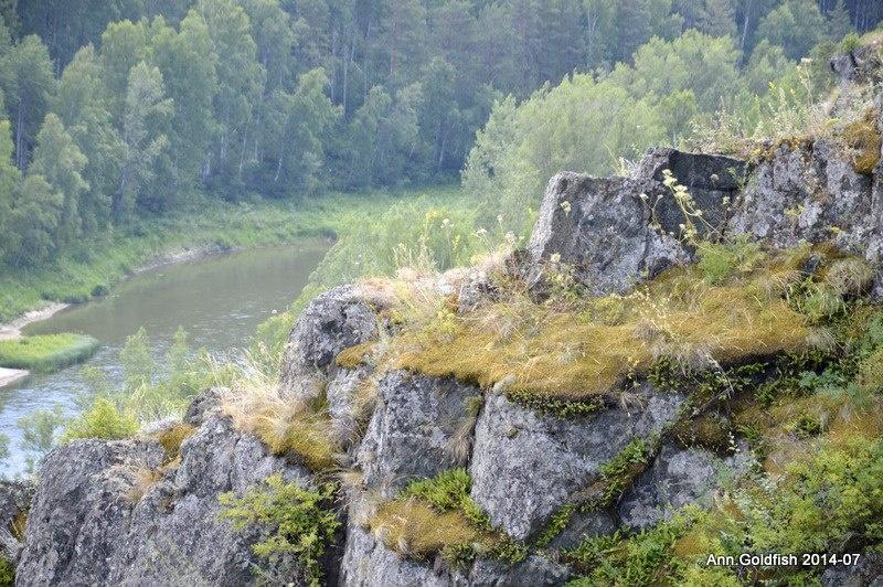 бердские скалы фото