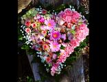 сердце из роз и пионов купи на валентина