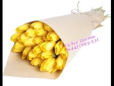 Тюльпаны желтые 25 штук