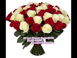 Дешевые розы по акции 51 роза/101роза/151 роза