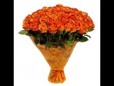 101 оранжевая роза