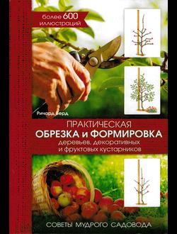 Практическая обрезка и формировка деревьев, декоративных и фруктовых кустарников