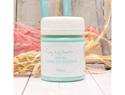 Краска 2в1 SHABBY MILK CRACKLE EXPRESS 50мл мята