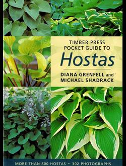 Pocket Guide to Hostas
