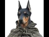 Пёс войны - коллекционная фигурка 1/6 Synthetisches Menschliches TC.M1003? - Toys CIty