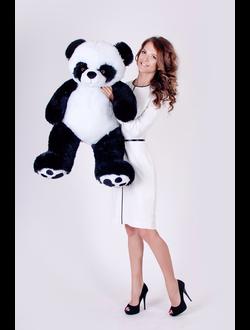 купить панду в Минске