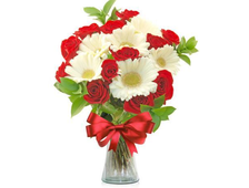 15 красных роз и белые Герберы букет Классический