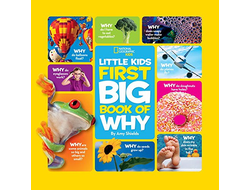 Kids First Big Book of Why