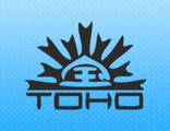 Японский бисер TOHO Beads