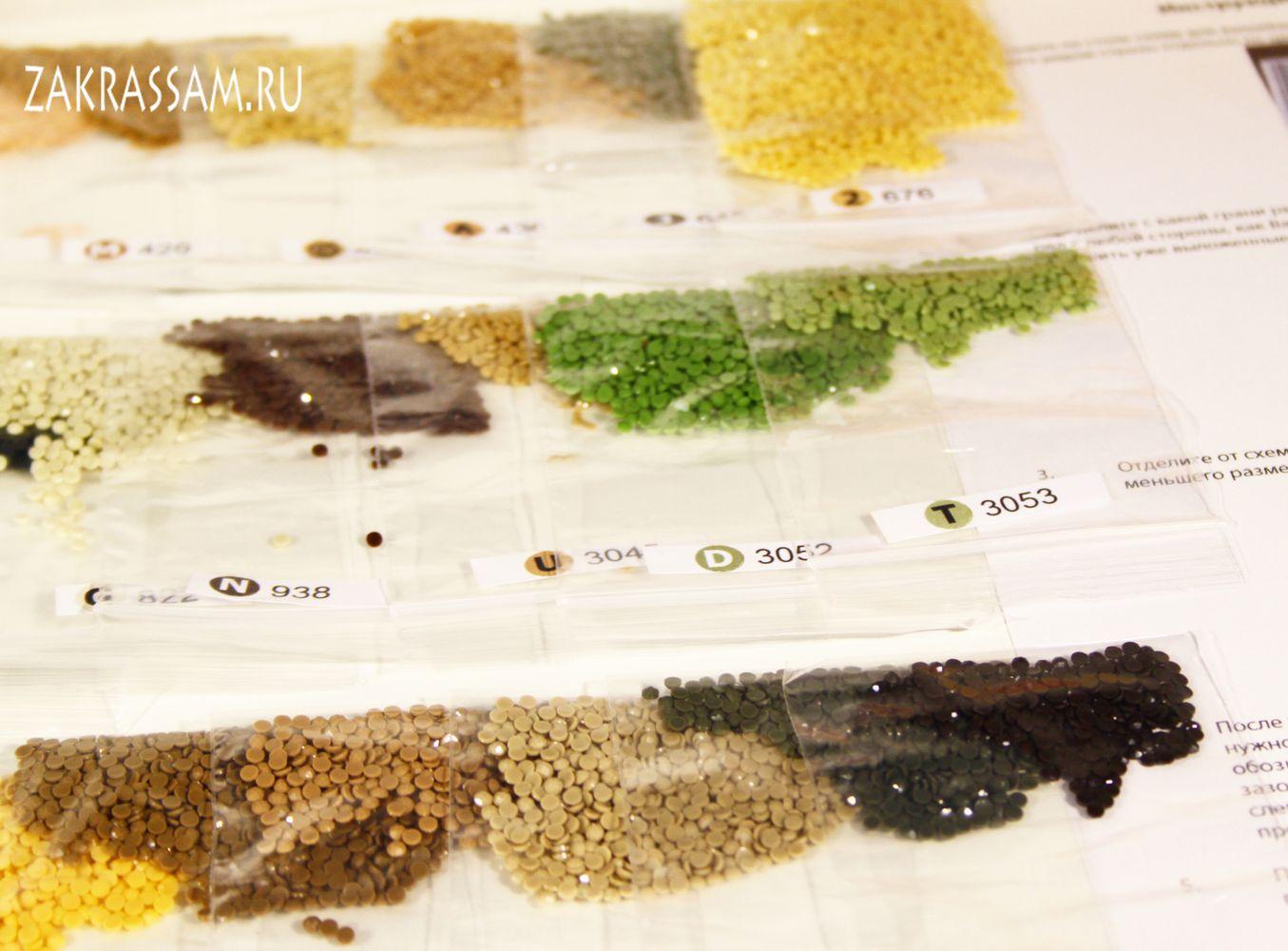 Алмазная вышивка в норильске 60