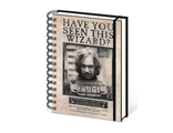 Ежедневник Pyramid: Harry Potter (Wanted Sirius Black) A5 Wiro Notebooks