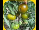 Зеленоплодные сорта томатов