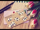 D0432 Hello Panda!