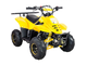Grizzly 110cc-6""