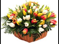 Корзина Тюльпанов Весенние Искры