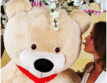 Гигантские медведи 170 см