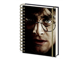 Ежедневник Pyramid: Harry Potter (Harry/Voldermort) A5 Wiro Notebooks 3D