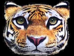 КотоПодушка - Тигр (Мал)