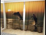 Дельфины на солнце