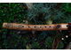Native American style flute in F#