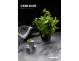 "Dark Side ""Dark Mint"" - Dark Side ""Тёмная мята"" 250 гр"