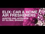 Продажа оптовой фирмы импортера автомобильных аксессуаров и освежителей