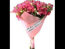 Букет 15 Альстромерий (цвет из ассортимента)