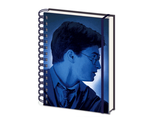 Ежедневник Pyramid: Harry Potter (Magic Portrait) 3D Cover A5 Wiro Notebooks 3D
