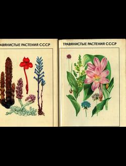 Травянистые растения в 2-х томах