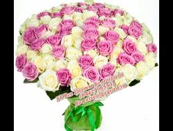 101 роза розовая-букет 101 розовая роза