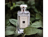 Blackberry & Bay от Jo Malone