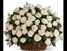 Корзина из 101 белой розы Белый поцелуй