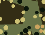 Camo Wrapping 004