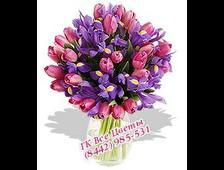 Ирисы с розовыми Тюльпанами букет (51 цветок)