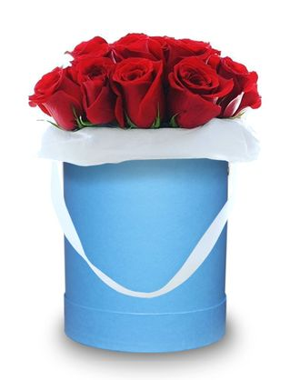 Blue box red roses