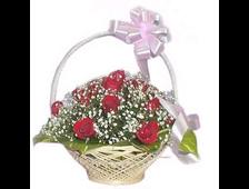 25 красных роз в корзине с Гипсофилой Парижанка