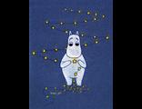 Мумий Тролль и звёзды